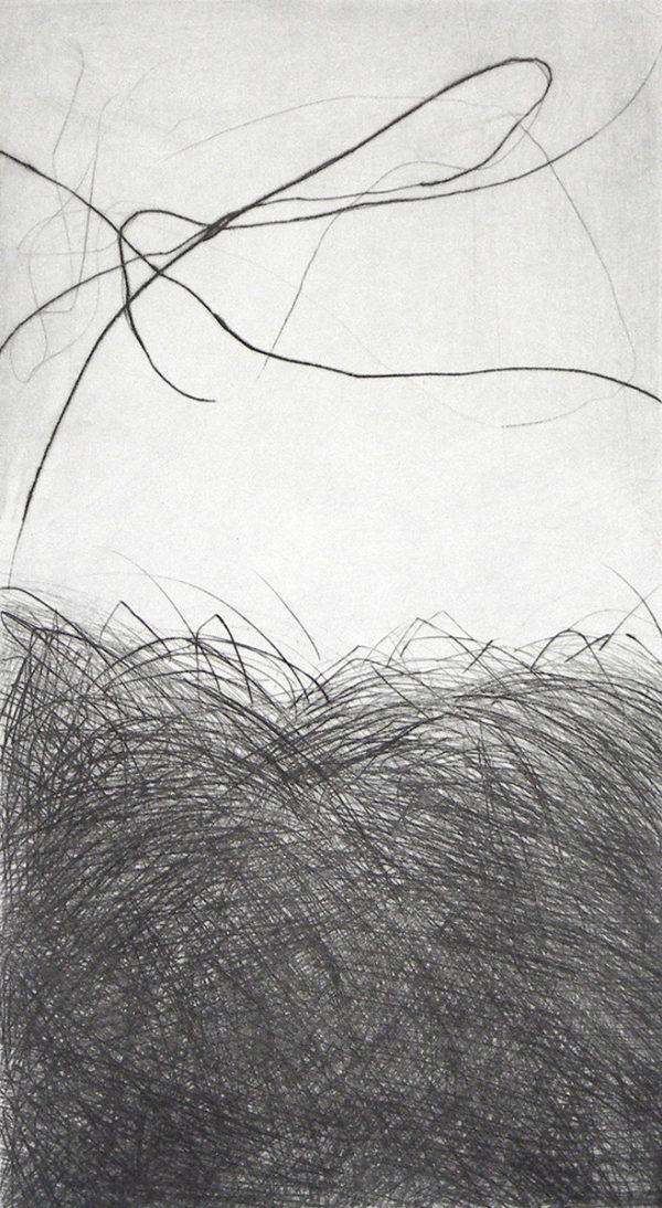 Eve Luquet, Gravure « Champs », pointe sèche sur cuivre, format plaque 14 x 25 cm, 2016 (© E. Luquet)