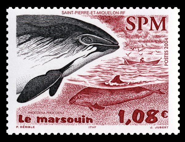 Saint-Pierre et Miquelon : Le marsouin, 2004 (dessin de Patrick Dérible, gravure de Jacques Jubert, impression taille-douce) (© Saint-Pierre et Miquelon La Poste / P. Dérible / J. Jubert)