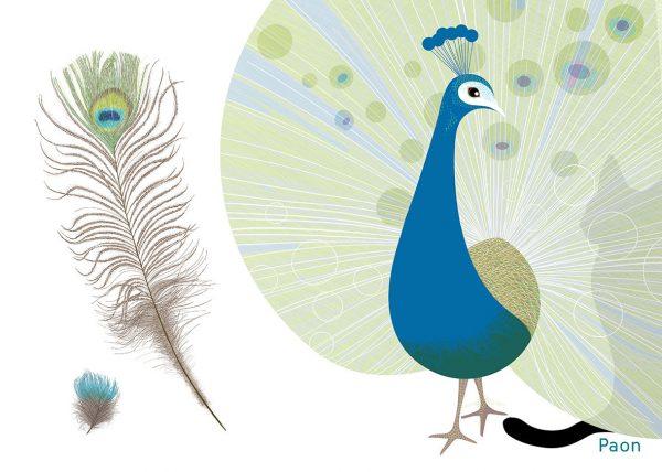 Isabelle Simler, « Plume », album jeunesse, Editions courtes et longues, dessin numérique, 2012 (© I. Simler)