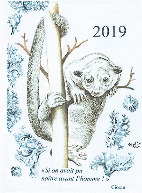 Carte de vœux 2019 de Marie-Noëlle Goffin (© MN.Goffin)