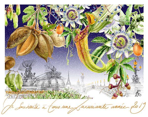 Carte de vœux 2019 de Florence Gendre (© F. Gendre)