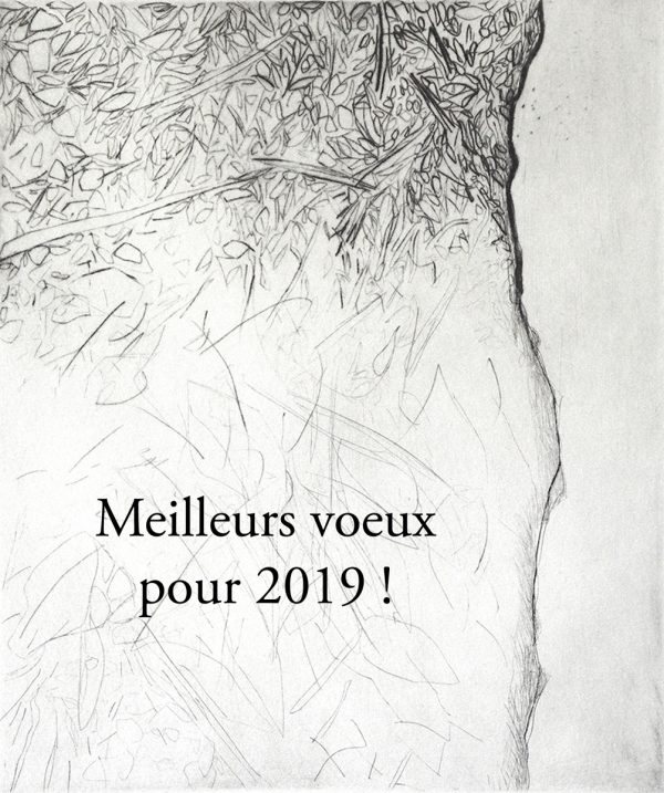 Carte de vœux 2019 d'Eve Luquet (© E. Luquet)