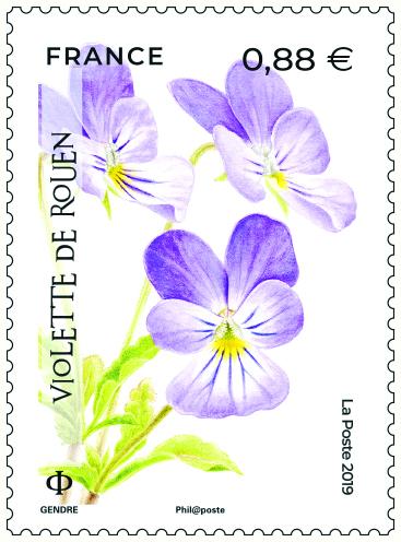Violette de Rouen, 2019 (création et mise en page de Florence Gendre, impression héliogravure) (d'après photo © Jérémie Van Es / CBN Alpin) © La Poste/F. Gendre