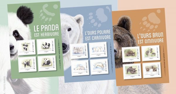 Collectors panda, ours blanc, ours brun