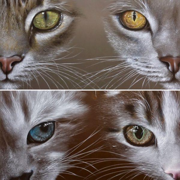 Yeux de chats, acrylique sur toile de lin
